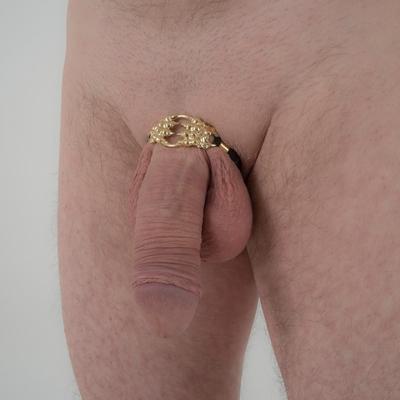 Penis sieraad met 2 gouden tijger klauwen