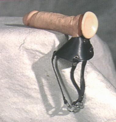 Balzaktuig met riempjes en ring