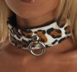 Halsband, luipaard